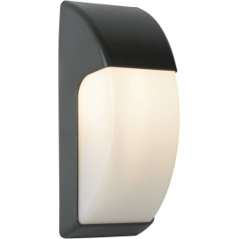 Outdoor LED Wall Light