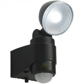 Outdoor 2w Battery Operated LED PIR Spotlight 22.1cm