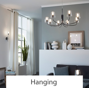 Hanging Ceiling Lights